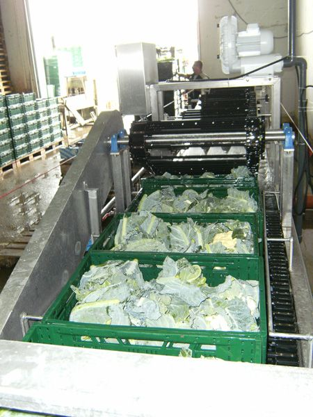 Salatwaschmaschine
